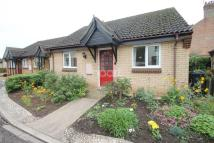 2 bed Bungalow for sale in Kimbolton Court...