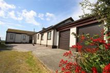 Detached home for sale in Bodedern, Anglesey, LL65