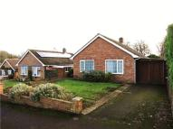 Bungalow to rent in Beech Rise...
