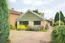 Detached Bungalow for sale in Upper Road, Kennington...