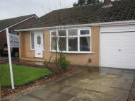 Semi-Detached Bungalow to rent in Bradwell Road, Lowton...