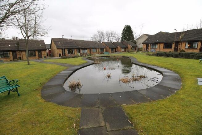 Pond area