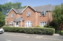 2 bed Flat to rent in Hickory Close...