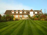 Detached house to rent in Lughorse Lane, Yalding...