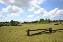 Farm Land in , Eccliffe , Gillingham for sale