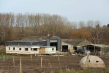 Farm Land in West Wellow, Romsey