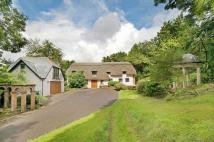 6 bed Detached property in Sherfield English