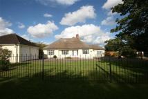 4 bed Bungalow in Broadlawns