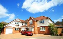 5 bedroom Detached house for sale in Berkeley Close, Ipswich