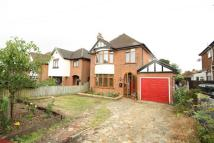 Detached property for sale in Henley Road, Ipswich