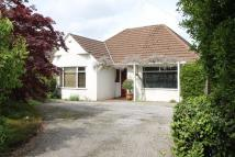 Detached Bungalow in Ty Wern Road, Rhiwbina...