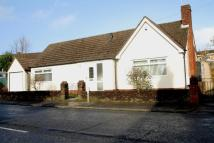 Detached Bungalow in Pantbach Road...