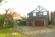 5 bedroom Detached property in Ducks Hill Road...