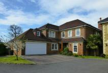 6 bed Detached property for sale in St. Martins...