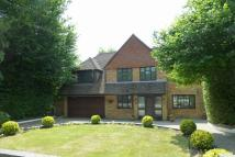Detached home for sale in Copse Wood Way, Northwood