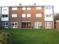 Flat to rent in Golf Links Court...