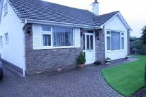 Dorchester Crescent Detached Bungalow for sale