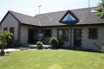 Detached Bungalow for sale in Sandy Lane...