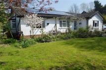 Detached Bungalow for sale in Ireleth Road...
