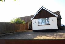 Detached Bungalow for sale in Fermoy Road, Thorpe Bay...