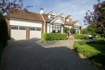 Detached property in Bournes Green Chase...
