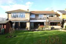 6 bed Detached property in Wyatts Drive, Thorpe Bay...