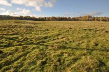 Plot in Land at  Chapelton Farm...