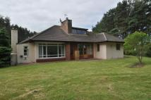 2 bed Bungalow for sale in Heathsands Findhorn Road...