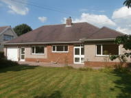 Detached Bungalow in 14 Wind Street, Laleston...