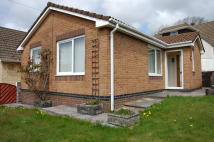Detached Bungalow to rent in Y Lan, Pencoed, Bridgend...