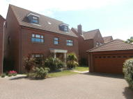 5 bed Detached property to rent in Sanderling Way...