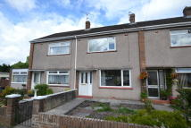 Lewis Avenue Terraced property to rent