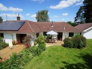 Detached Bungalow for sale in Hewelsfield, Lydney