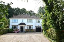 5 bed Detached home to rent in Malibres Road...