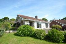 Detached Bungalow for sale in Breamore Close...
