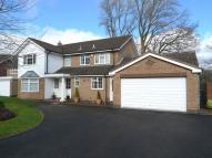 Detached property to rent in Welcombe Grove, Solihull...