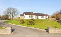 Menai Bridge new house for sale