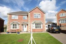 4 bed Detached property in Llanfairpwllgwyngyll...