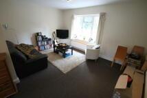 1 bedroom Flat in St Micheals Court...