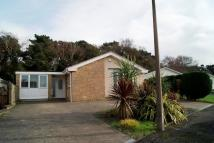 Detached Bungalow to rent in Jennings Road, Poole...