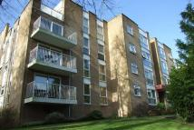 Ground Flat to rent in St. Winifreds Road...