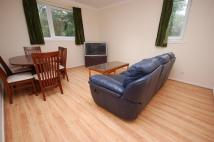 Ground Flat to rent in Craigmount Hill...