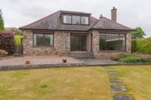 Bungalow to rent in Lugton Brae, Dalkeith...