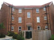new Flat to rent in Wallsend