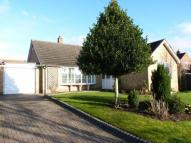 Detached Bungalow in Cundall Road, Asenby...