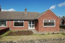 Wensley Road Semi-Detached Bungalow for sale