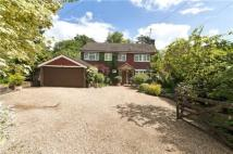Detached house for sale in Bushfield Road...
