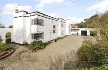 7 bed Detached property in Potter Row...