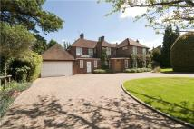 Cokes Lane Detached house for sale