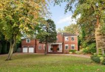 6 bedroom Detached home for sale in South View Road...